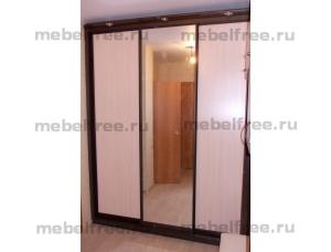 Шкаф-купе с зеркалом  на заказ